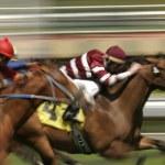 abstrakte motion blur-pferderennen — Stockfoto