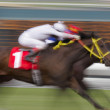 Neck and Neck Horse Race — Stock Photo