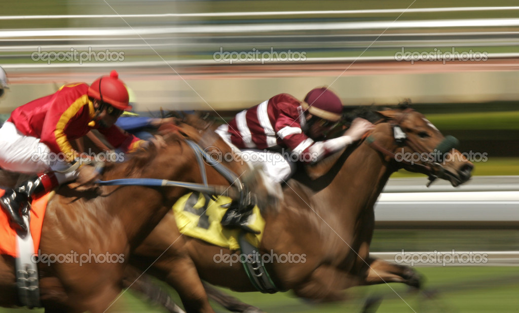 Close-up of racing thoroughbreds. Shot at slow shutter speed to enhance motion effect. — Stock Photo #2520626