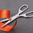 Scissors — Stock Photo #2601000