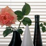 kwiaty — Zdjęcie stockowe #2679473