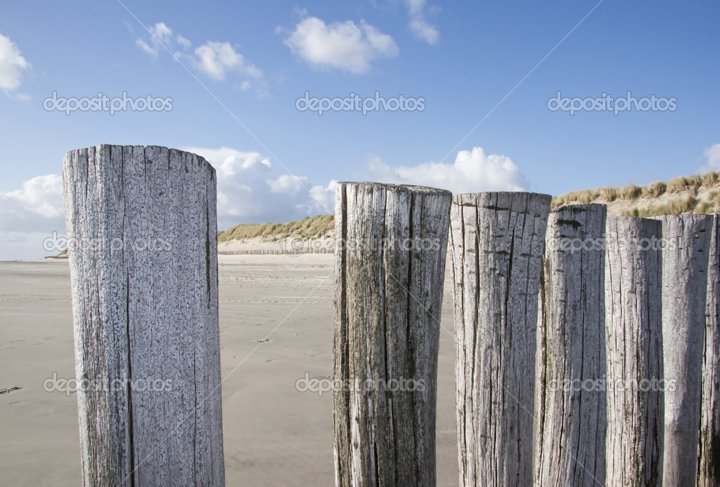 Wooden groynes at the beach of german baltic sea — Stock Photo #2495901