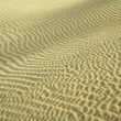 Sand ripples — Stock Photo #2590171
