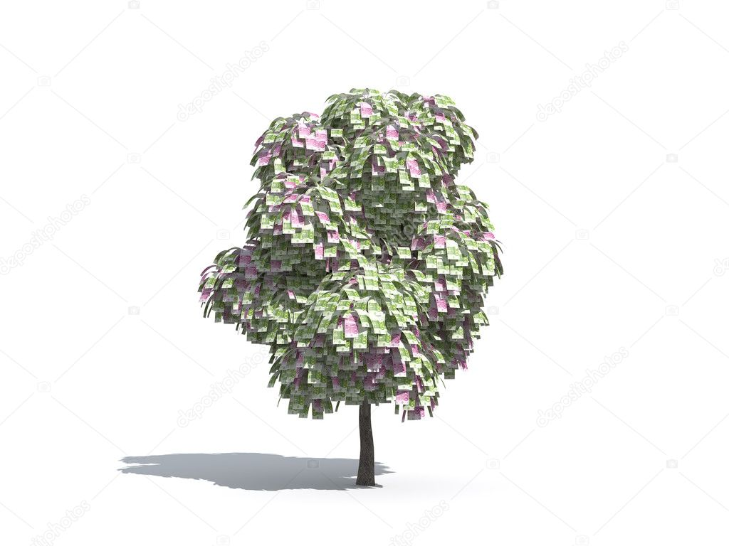 Money tree of Euro isolated on white background — Stock Photo #2465478