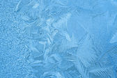 Ice crystals on the window — Stock Photo