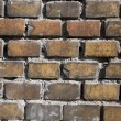 Brick — Stock Photo #2508319
