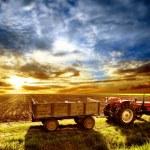 Tractor — Stock Photo #2492923