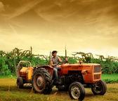 Young farmer — Стоковое фото