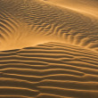Desert dunes in evening sun - Stock Photo
