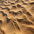 Stock Photo: Rippled desert sand pattern in daylight