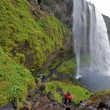Iceland waterfall — Foto de stock #2511596