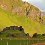 Islândia — Foto Stock