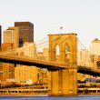 Brooklyn Bridge — Stock Photo #2516407