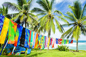 Typical fabrics, Bathsheba, East coast o — ストック写真