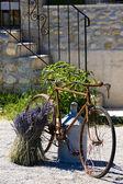 Provence — Stock Photo