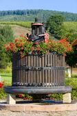 Wine-press — Stock Photo