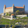 Royalty-Free Stock Photo: Bratislava
