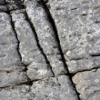 Cracks on stone — Stock Photo #2609942