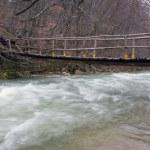 Wooden bridge over mountain river — Stock Photo #2622425