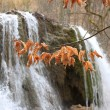 Autumn leafs on waterfall background — Stock Photo