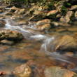 Mountain stream — Stock Photo #2623214