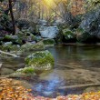 Autumn landscape with mountain river — Stock fotografie