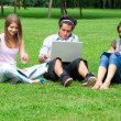 Three students studying outdoors — Photo