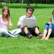Three students studying outdoors - Foto Stock