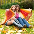 Stock Photo: Two girls sit in the autumn park