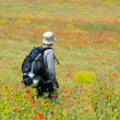 Happy hiker on a poppy field - Stock Photo