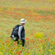 Happy hiker on a poppy field — Stock Photo #2606897