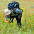 Happy hiker on a poppy field — Stock Photo #2606919