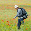 Stock Photo: Happy hiker on a poppy field