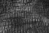Burnt wood texture — Stock Photo