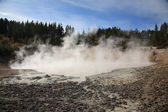Yellowstone National Park - Mud Pots — Stock Photo