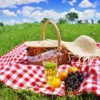 Picnic — Stock Photo #2486903