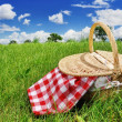 Stock Photo: Picnic