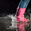Stock Photo: Thrill of a puddle jump