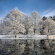 Lake scene in winter — Stockfoto