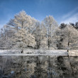 Lake scene in winter - Stock Photo