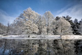 Lake scene in winter — Stock Photo