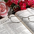 Open Bible and Flowers — Stock Photo #2453473