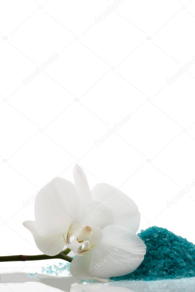 White orchid flower with blue mineral bath salt  Stock Photo #2455924