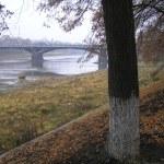 霧の中の橋 — ストック写真