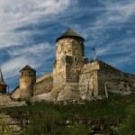 丘の上の古い城 — ストック写真