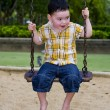 Stock Photo: Cute boy on a swing