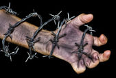 Hand grabbing a barbed wire — Stock Photo