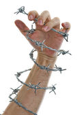 Hand holding a barbed wire — Stock Photo
