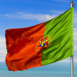 Flag of portugal — Stock Photo #2547146