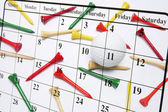 Calendar and Golf Tees — Stock Photo
